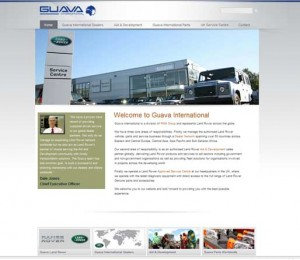 Guava International Website Home Page